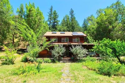Cazadero CA Single Family Home For Sale: $785,000