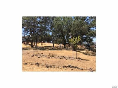 Hidden Valley Lake Residential Lots & Land For Sale: 19795 Donkey Hill Road