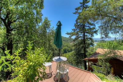 Healdsburg Single Family Home For Sale: 1875 South Fitch Mountain Road