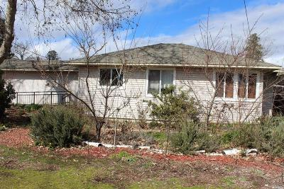 Covelo Single Family Home For Sale: 23740 Greely Street