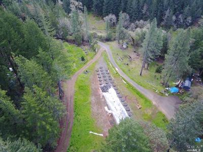 Willits Residential Lots & Land For Sale: 5376 Wild Iris Lane
