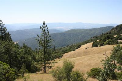 Covelo CA Residential Lots & Land For Sale: $1,299,000