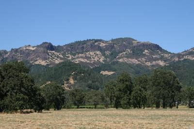 Calistoga Residential Lots & Land Contingent-Show: 1400 Tubbs Lane