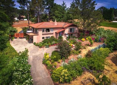 Kelseyville Single Family Home For Sale: 1615 Eastlake Drive