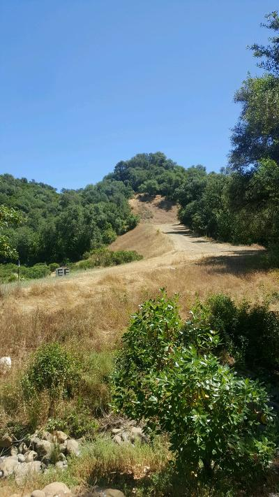 Napa Residential Lots & Land For Sale: 5860 State Highway 128