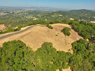Residential Lots & Land For Sale: 3945 Flintridge Drive #Lot 9