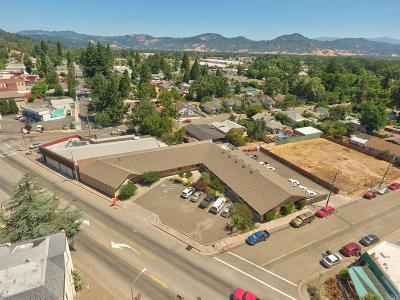 Willits Commercial For Sale: 335 South Main Street