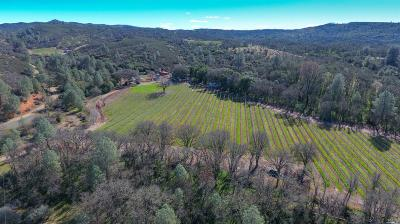 Clearlake Farm & Ranch For Sale: 2050 Ogulin Canyon Road