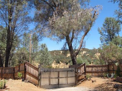 Pope Valley Single Family Home Contingent-Show: 1023 Deputy Drive
