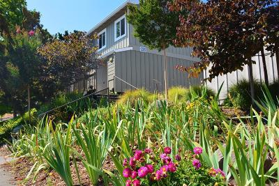 Novato Condo/Townhouse For Sale: 1285 Redwood Boulevard