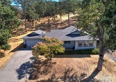 Hidden Valley Lake Single Family Home For Sale: 19240 Mountain Meadow North Road