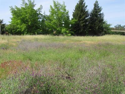 Ukiah Residential Lots & Land For Sale: 531 South Orchard Avenue