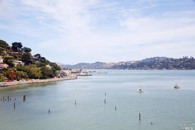 Sausalito Condo/Townhouse For Sale: 100 South Street #317