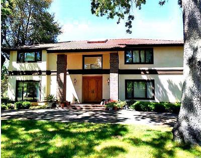 Kelseyville Single Family Home For Sale: 8266 Peninsula Drive