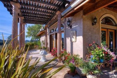 Calistoga Single Family Home For Sale