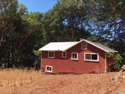 Healdsburg Single Family Home For Sale: Mill Creek Road