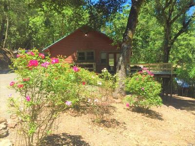 Calistoga Single Family Home For Sale: 3263 State Highway 128
