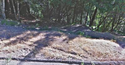 Willits Residential Lots & Land For Sale: Buckeye Drive