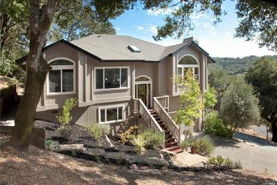 Healdsburg Single Family Home For Sale: 9400 Chalk Hill Road