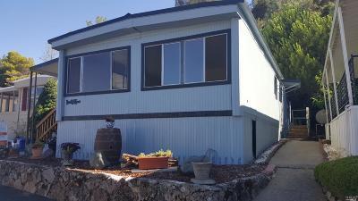 Lower Lake Mobile Home For Sale: 11270 Konocti Vista Drive #27, 27