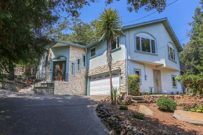 Santa Rosa Single Family Home For Sale: 3017 Sunridge Drive