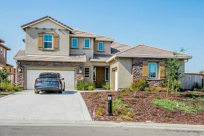 Vacaville Single Family Home For Sale: 230 Deer Branch Lane