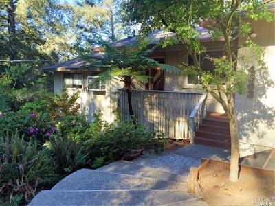 Santa Rosa Single Family Home For Sale: 4363 Parker Hill Road