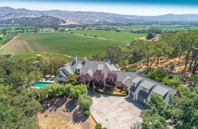 Napa County Farm & Ranch For Sale: 10 Vineyard View Drive