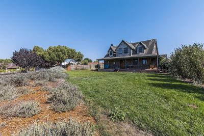Petaluma Single Family Home For Sale: 112 McBrown Road