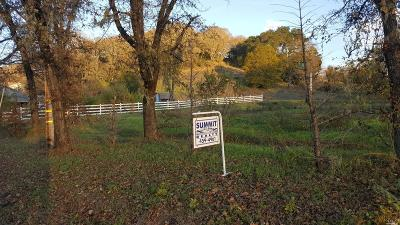Residential Lots & Land For Sale: 13709 Old River Road