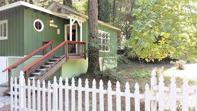 Camp Meeker, Cazadero, Duncans Mills, Forestville, Guerneville, Jenner, Monte Rio Single Family Home For Sale: 20795 Bohemian Avenue