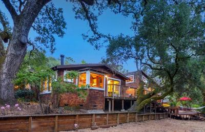 Glen Ellen Single Family Home For Sale: 1595 Warm Springs Road