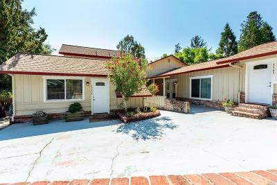 Sebastopol Single Family Home For Sale: 7565 Bodega Avenue
