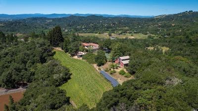 Santa Rosa Single Family Home For Sale: 4225 Bastoni Lane