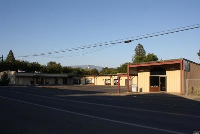 Mendocino County Commercial For Sale: 76401 Covelo Road
