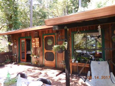 Guerneville Single Family Home For Sale: 18030 Old Monte Rio Road