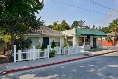 Sebastopol Single Family Home For Sale: 7697 Bodega Avenue