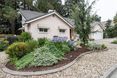 Napa Single Family Home For Sale: 4091 Sutro Drive