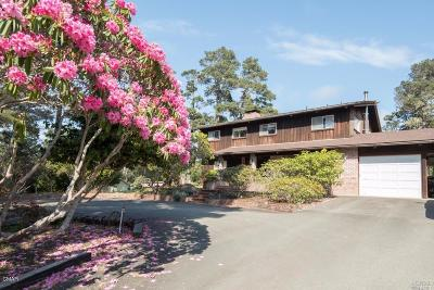 Fort Bragg Single Family Home For Sale: 18381 Old Coast Hwy Highway