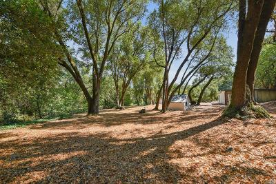 Glen Ellen Single Family Home For Sale: 4255 Warm Springs Road