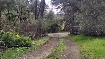 Healdsburg CA Farm & Ranch For Sale: $1,050,000