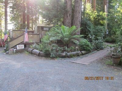 Sebastopol, Graton, Occidental Single Family Home For Sale: 2450 Joy Road