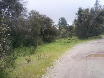 Clearlake Residential Lots & Land For Sale: 3604 Peony Street