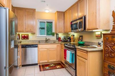 Healdsburg Condo/Townhouse For Sale: 200 Foss Creek Circle #D