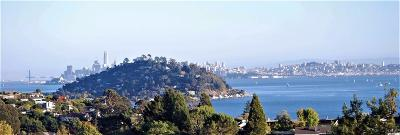 Tiburon Single Family Home For Sale: 5 Buckwheat Court