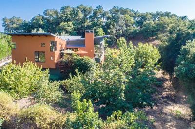 Healdsburg Single Family Home For Sale: 1591 Clear Ridge Drive