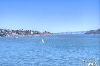 Sausalito Condo/Townhouse For Sale: 100 South Street #318