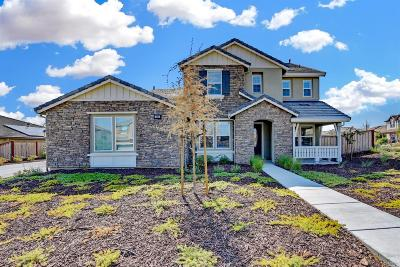 Vacaville Single Family Home For Sale: 301 Shining Horse Way
