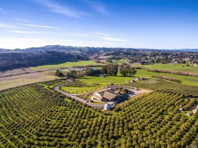 Sonoma County Commercial For Sale: 3387 Canfield Road