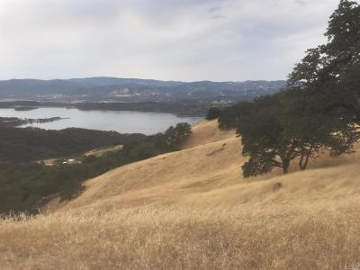 Lake County, Marin County, Mendocino County, Napa County, Sonoma County Residential Lots & Land For Sale: 4501 King Ranch Road